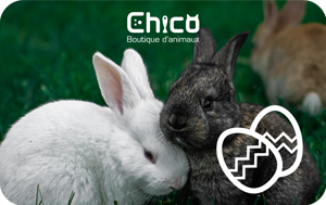 Boutiques d'animaux Chico Digital Gift Card #2
