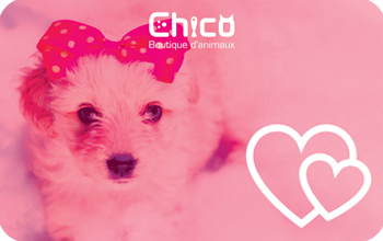 Boutiques d'animaux Chico Digital Gift Card #4